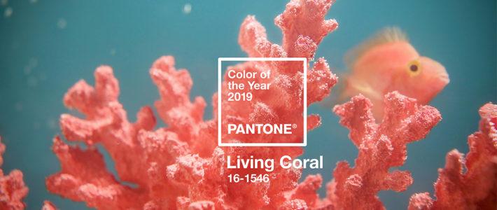 Pantone Farbe des Jahres: LIVING CORAL